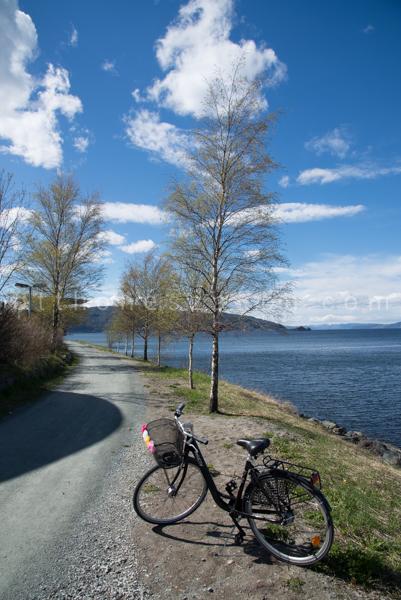 Kedvenc biciklis szakaszom, a Ladestien