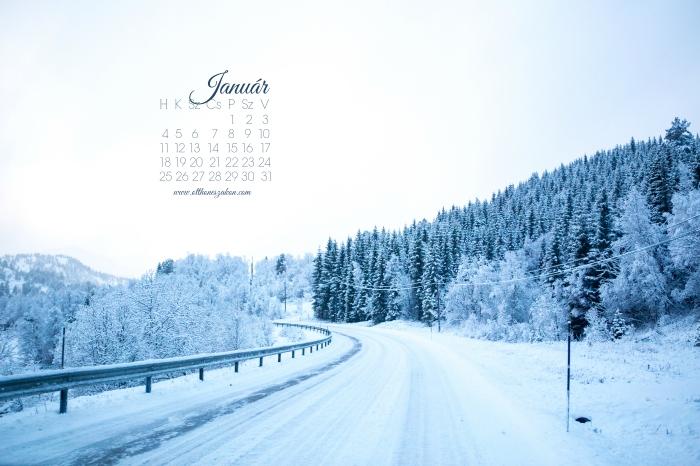 januarhatter